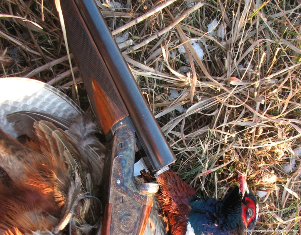 2017 Hunting Season Photos - Let's See Them - Page 2