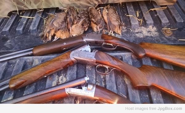 Favorite Game/Gun Picture - 2017 Hunting Season - The DoubleGun BBS